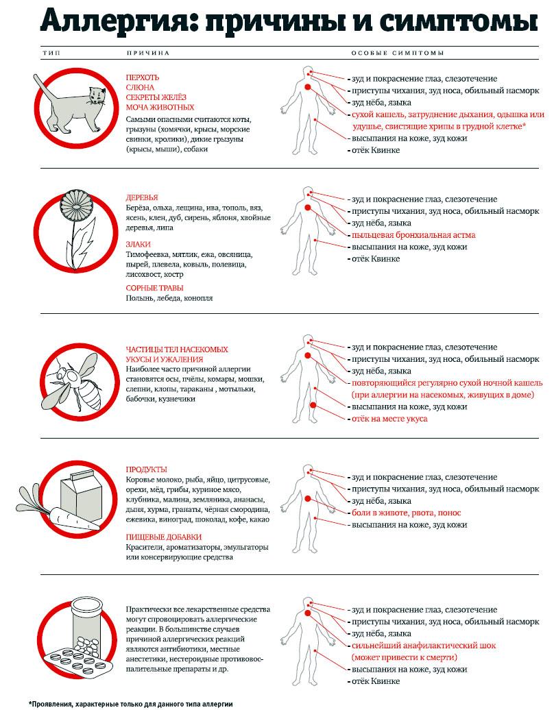 Основные причины аллергии