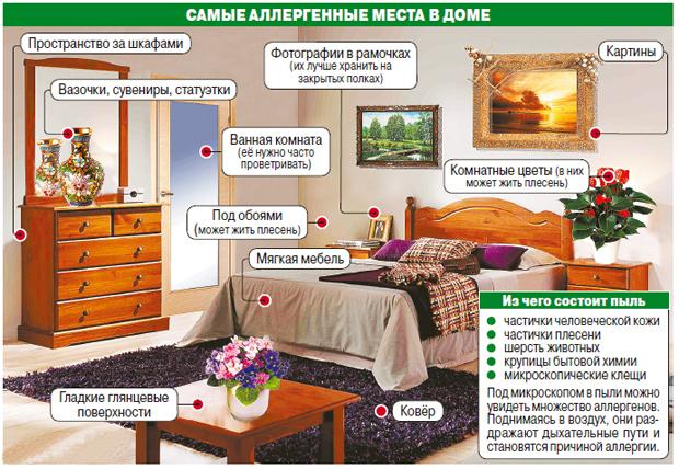 Основные аллергены в доме