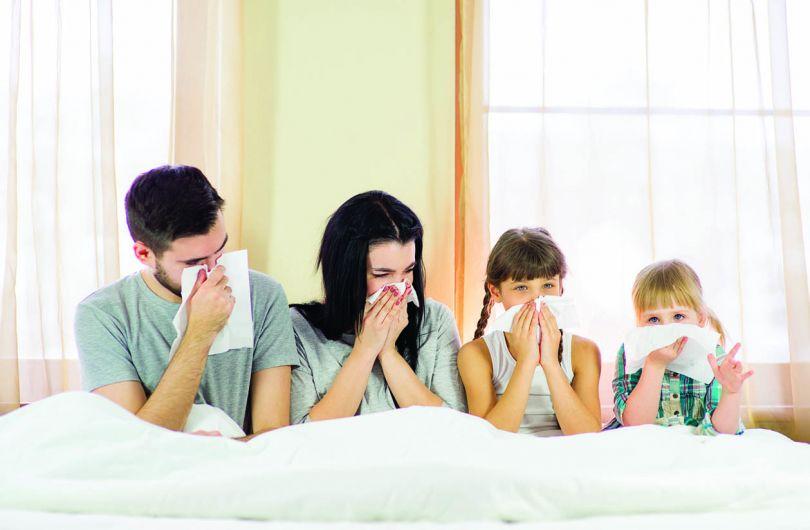 Аллергия при ремонте или переезде: что делать?